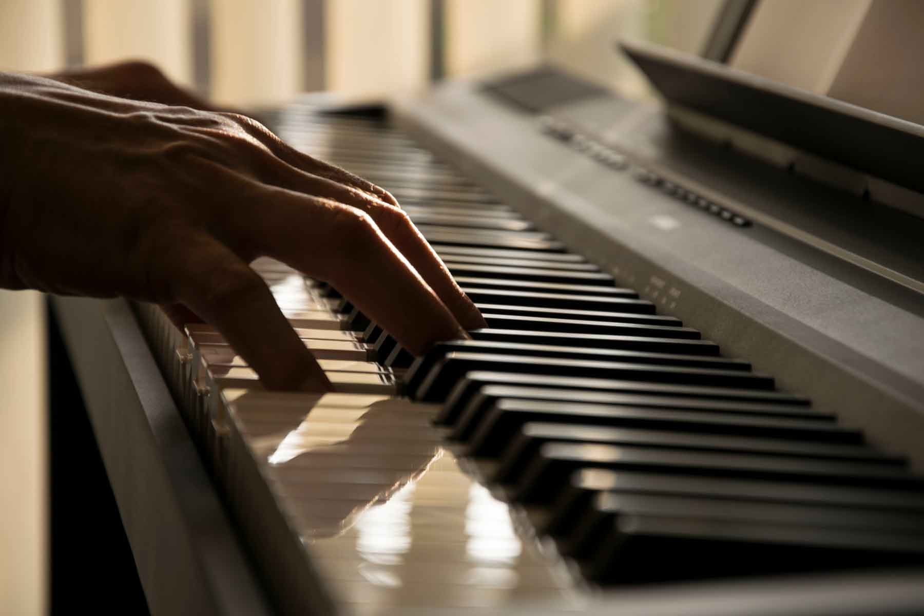 Why The Piano is so popular