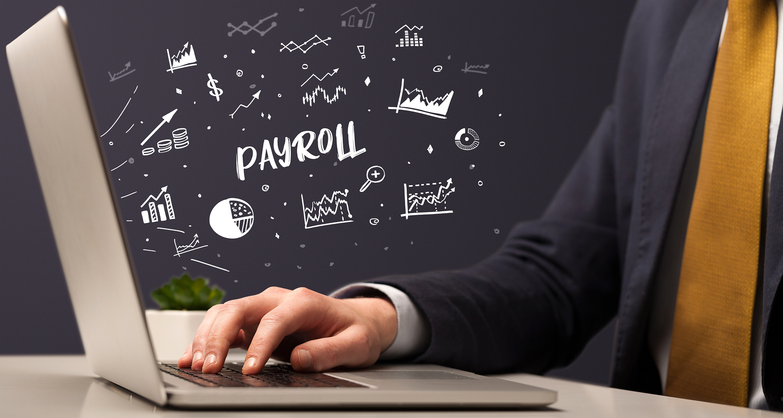 Why You Should Be Careful Whilst Using Employee Payroll Software