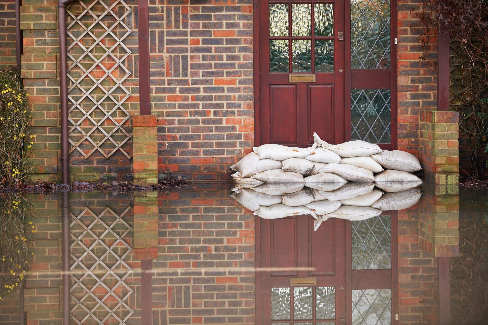 Benefits of Hiring a Water Damage Restoration Company